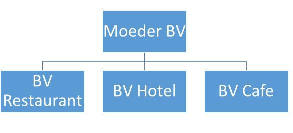 BV structuur met moeder BV